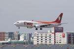 pringlesさんが、福岡空港で撮影したティーウェイ航空 737-8KNの航空フォト(写真)
