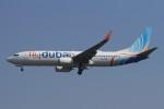 BTYUTAさんが、インディラ・ガンディー国際空港で撮影したフライドバイ 737-8KNの航空フォト(写真)