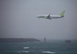 タミーさんが、大分空港で撮影したソラシド エア 737-86Nの航空フォト(写真)