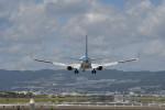 kuro2059さんが、伊丹空港で撮影した全日空 737-881の航空フォト(写真)