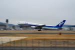 Astechnoさんが、伊丹空港で撮影した全日空 767-381の航空フォト(写真)