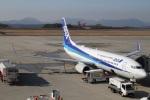 camelliaさんが、広島空港で撮影した全日空 737-881の航空フォト(写真)