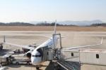 camelliaさんが、広島空港で撮影した日本航空 737-846の航空フォト(写真)