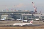 OS52さんが、羽田空港で撮影した日本航空 787-8 Dreamlinerの航空フォト(写真)