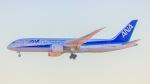 ケロリ/Keroriさんが、成田国際空港で撮影した全日空 787-8 Dreamlinerの航空フォト(写真)