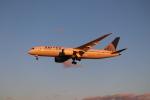 BOEING737MAX-8さんが、成田国際空港で撮影したユナイテッド航空 787-8 Dreamlinerの航空フォト(写真)