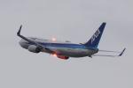 HEATHROWさんが、神戸空港で撮影した全日空 737-8ALの航空フォト(写真)
