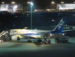 flyflygoさんが、羽田空港で撮影した全日空 787-8 Dreamlinerの航空フォト(写真)