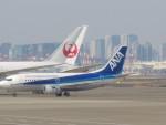 flyflygoさんが、羽田空港で撮影した全日空 737-54Kの航空フォト(写真)