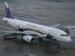 flyflygoさんが、福岡空港で撮影した香港エクスプレス A320-232の航空フォト(写真)