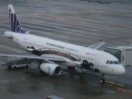 flyflygoさんが、福岡空港で撮影した香港エクスプレス A320-232の航空フォト(飛行機 写真・画像)
