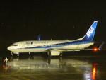flyflygoさんが、佐賀空港で撮影した全日空 737-881の航空フォト(写真)