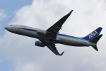 camelliaさんが、岩国空港で撮影した全日空 737-881の航空フォト(写真)
