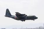akinarin1989さんが、福岡空港で撮影した航空自衛隊 C-130H Herculesの航空フォト(写真)
