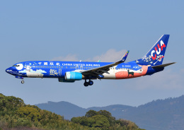 じーく。さんが、福岡空港で撮影した中国聯合航空 737-8HXの航空フォト(写真)