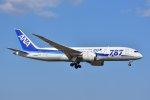 islandsさんが、成田国際空港で撮影した全日空 787-8 Dreamlinerの航空フォト(写真)