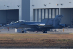 れんしさんが、岩国空港で撮影したアメリカ海軍 F/A-18E Super Hornetの航空フォト(写真)