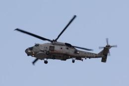 camelliaさんが、岩国空港で撮影した海上自衛隊 SH-60Kの航空フォト(写真)