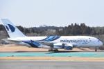 FLYING  HONU好きさんが、成田国際空港で撮影したマレーシア航空 A380-841の航空フォト(写真)