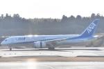 木のピー乃木坂46&DAPUMP好きさんが、成田国際空港で撮影した全日空 787-8 Dreamlinerの航空フォト(写真)