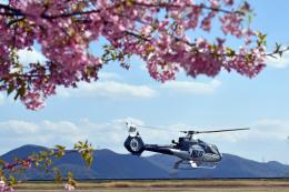 Gambardierさんが、岡南飛行場で撮影した日本法人所有 EC130B4の航空フォト(飛行機 写真・画像)