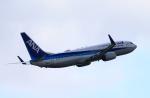 TAKAHIDEさんが、伊丹空港で撮影した全日空 737-881の航空フォト(写真)