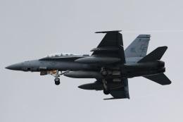 camelliaさんが、岩国空港で撮影したアメリカ海兵隊 F/A-18D Hornetの航空フォト(写真)