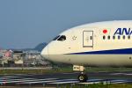 アカゆこさんが、台北松山空港で撮影した全日空 787-8 Dreamlinerの航空フォト(写真)