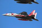 Kanarinaさんが、新田原基地で撮影した航空自衛隊 F-15J Eagleの航空フォト(写真)
