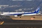 冷やし中華始めましたさんが、伊丹空港で撮影した全日空 A321-211の航空フォト(写真)