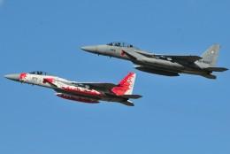海山さんが、新田原基地で撮影した航空自衛隊 F-15J Eagleの航空フォト(飛行機 写真・画像)