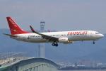 キイロイトリさんが、関西国際空港で撮影したイースター航空 737-86Jの航空フォト(写真)