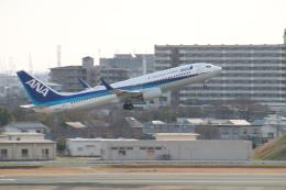 myoumyoさんが、伊丹空港で撮影した全日空 737-881の航空フォト(写真)