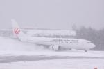 元青森人さんが、広島空港で撮影した日本航空 737-846の航空フォト(写真)