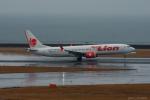 ぱん_くまさんが、中部国際空港で撮影したタイ・ライオン・エア 737-9-MAXの航空フォト(写真)