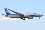 知希(仮)さんが、成田国際空港で撮影した全日空 787-8 Dreamlinerの航空フォト(写真)