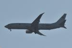 NFファンさんが、厚木飛行場で撮影したアメリカ海軍 P-8A (737-8FV)の航空フォト(写真)