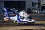 Mizuki24さんが、東京ヘリポートで撮影したオールニッポンヘリコプター AS365N2 Dauphin 2の航空フォト(写真)