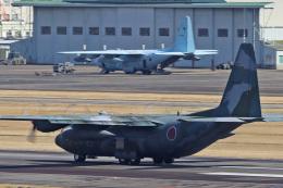 スカルショットさんが、名古屋飛行場で撮影した航空自衛隊 C-130H Herculesの航空フォト(写真)