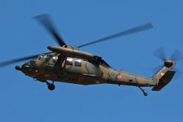 スカルショットさんが、名古屋飛行場で撮影した陸上自衛隊 UH-60JAの航空フォト(写真)