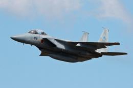 スカルショットさんが、名古屋飛行場で撮影した航空自衛隊 F-15DJ Eagleの航空フォト(写真)
