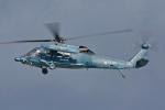 スカルショットさんが、名古屋飛行場で撮影した航空自衛隊 UH-60Jの航空フォト(写真)