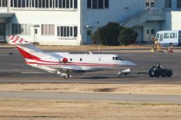 スカルショットさんが、名古屋飛行場で撮影した航空自衛隊 U-125 (BAe-125-800FI)の航空フォト(写真)