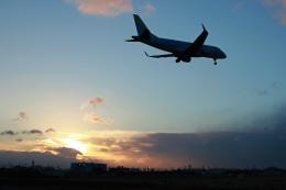 スカルショットさんが、名古屋飛行場で撮影したフジドリームエアラインズ ERJ-170-100 (ERJ-170STD)の航空フォト(写真)