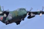 バイクオヤジさんが、厚木飛行場で撮影した航空自衛隊 C-130H Herculesの航空フォト(写真)