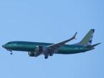 SKY☆MOTOさんが、ボーイングフィールドで撮影したボーイング 737-8-MAX BBJの航空フォト(写真)