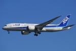 飛行機ゆうちゃんさんが、羽田空港で撮影した全日空 787-8 Dreamlinerの航空フォト(写真)