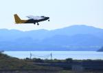 タミーさんが、長崎空港で撮影した新日本航空 BN-2B-20 Islanderの航空フォト(写真)