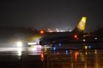 木人さんが、成田国際空港で撮影したスクート A320-232の航空フォト(写真)