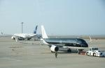 tamtam3839さんが、中部国際空港で撮影したスターフライヤー A320-214の航空フォト(写真)
